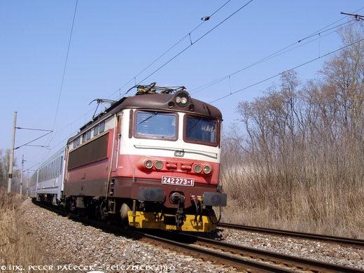 EC 103 Polonia Warszawa - Wien: ČD 242.273