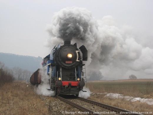 """Parný rušeň 477.013 """"Papagáj"""" na ceste do Prešova v Nižnej Šebastovej"""