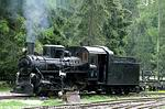 Výstava o lesných železniciach v Čechách, na Morave a Slovensku